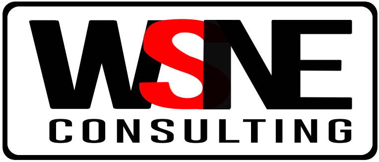 WSNE Consulting's Company logo